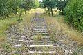 Peitz old railway.JPG