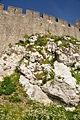 Pembroke Castle (4096).jpg