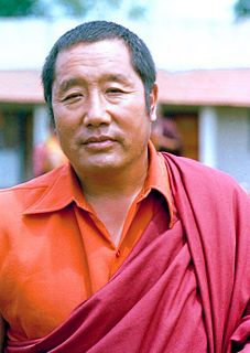 Penor Rinpoche Buddhist lama