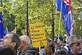 People's Vote March For The Future (44623360135).jpg