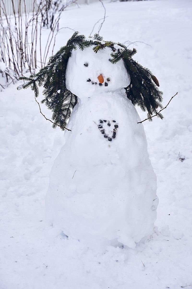 800px-PermaLiv_snow-woman_30-01-20.jpg