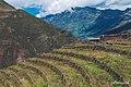 Peru (150252209).jpeg