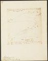Phoca gryphus - 1700-1880 - Print - Iconographia Zoologica - Special Collections University of Amsterdam - UBA01 IZ21100153.tif