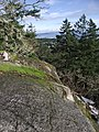 Pickles' Bluff - panoramio.jpg