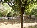 PikiWiki Israel 10615 technion ecological garden.jpg