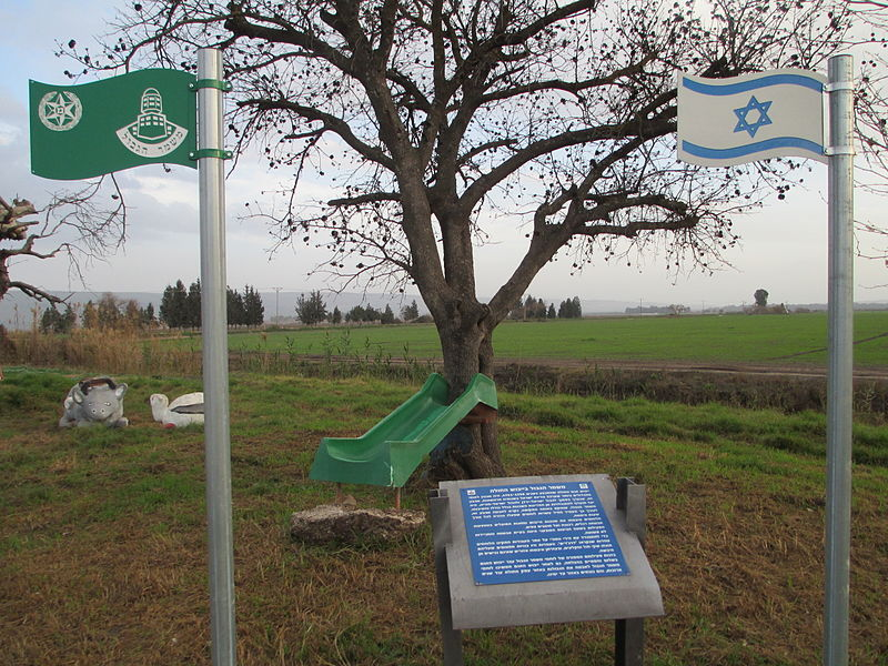 קובץ:PikiWiki Israel 34424 Agamon Hahula in Hula Valley.JPG
