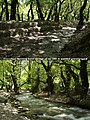 Planitero Aroanios-Springs Achaea Peloponnese.jpg