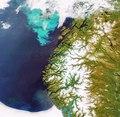 Plankton bloom off the coast of Norway ESA204317.tiff