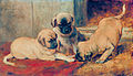 Playing Mastiff puppies by Johannes Cornelis van Essen.jpg