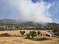 Požar na Trstelju, 2013 z vasjo Lipa.jpg