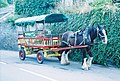 Polperro, the Horse Bus - geograph.org.uk - 571580.jpg