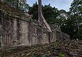 Preah Khan, Angkor, Camboya, 2013-08-17, DD 14.JPG