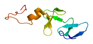 Protein CRIP1 PDB 1iml.png