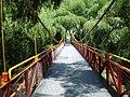 Puente colgante parque del cafe.jpg