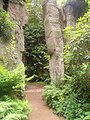 Quarry Garden, Belsay Hall - geograph.org.uk - 398587.jpg