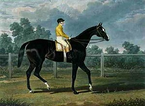 Queen of Trumps - Queen of Trumps', Won the Oaks Stakes (the Winner of the Great St. Leger Stakes at Doncaster, 1835) at Epsom, 1835 by John Frederick Herring