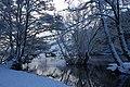 Ríos Rato e Miño nevados 8I2010 2.JPG