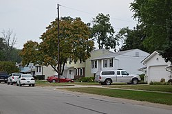 Houses in the township's eastern section