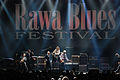 Rawa Blues 2008 54.jpg