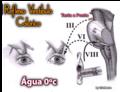 Reflexo Vestíbulo Calórico.png