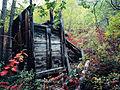 Remains of water tank at Pooley Creek, Yukon (10752684164).jpg