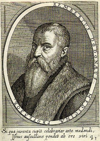 Rembert Dodoens - Rembert Dodoens, by Theodor de Bry, in Bibliotheca chalcographica (1669)