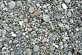 Renvyle beach stones (3585122829).jpg
