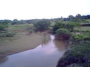 Reth river Barabanki