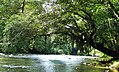 Rio Jilamito.jpg