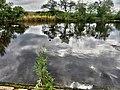 River Wharfe, Harewood, Leeds, UK, 21052017, Fuji, jcw1967, OPE (4) (34804105936).jpg