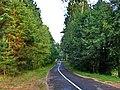 Road - panoramio - Fr0nt.jpg