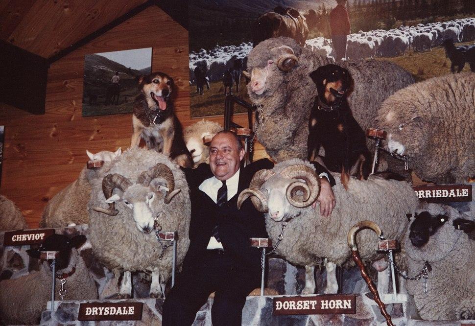Robert Muldoon in Rotorua, November 1980