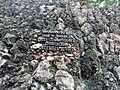 Rock Garden of Chandigarh 20180907 163044.jpg