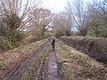 Rodway Lane, Sandhurst - geograph.org.uk - 87105.jpg