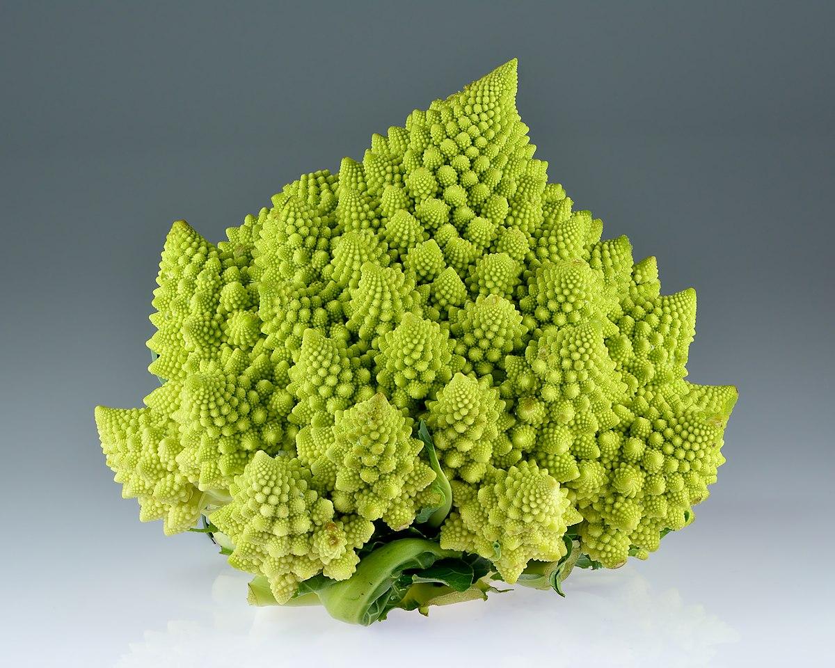 [Image: 1200px-Romanesco_broccoli_%28Brassica_oleracea%29.jpg]