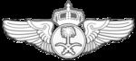 Royal Saudi Air Force Pilot Wing Badge.png