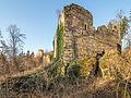 Ruine-Rauheneck-270216-2278320.jpg