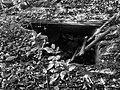 Ruiny koloni albert dg.jpg