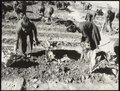 Rural education, Tananarive - UNESCO - PHOTO0000004184 0001.tiff