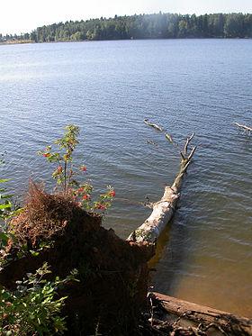 Рузское водохранилище — Википедия