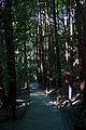 Ryosenji Nara Japan42s3.jpg