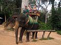 Słoń na przystanku w Angkor Wat - panoramio.jpg