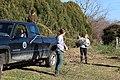 SB VSCC boxwood restoration at Mulberry Hill (16124947986).jpg