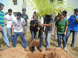 Planting trees around the campus under the green kalam movement