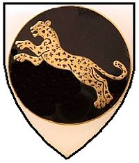 SWATF 911 Battalion emblem.jpg