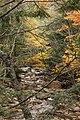 Sabbaday Falls Trail, Kancamagus Hwy, Waterville Valley (494202) (11924334873).jpg