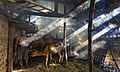 Salah satu kandang sapi di Selotapak.jpg