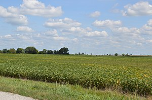 Salt Rock Township, Marion County, Ohio - Fields south of Morral