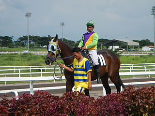 Horse racing in the Philippines