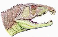 SarmatosuchusDB.jpg